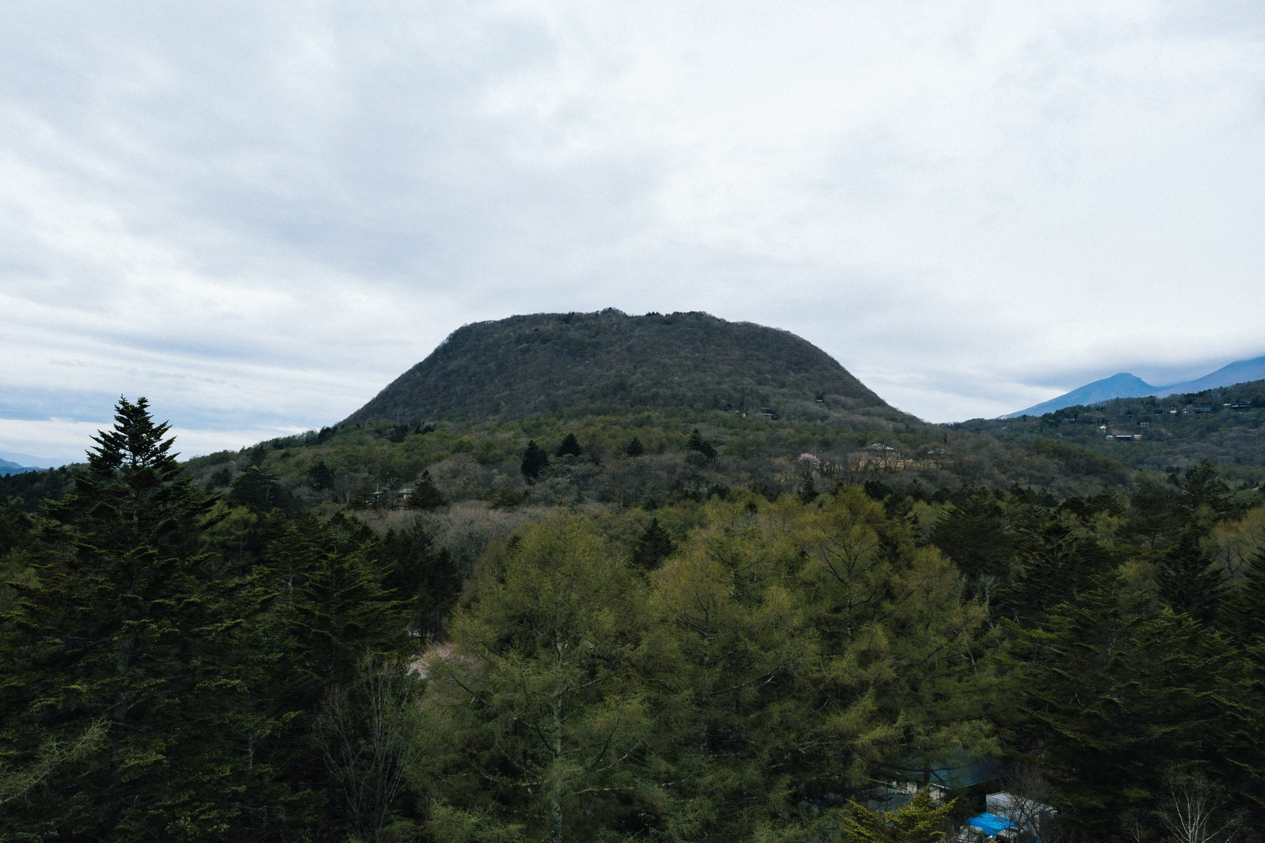 森の食用化を試みる実験 長野県 軽井沢町に位置する標高1256mの側火山、離山(はなれやま)。頂部が比較的平らであるためテーブルマウンテンともよばれるこの山は明治以来の植林によって覆いつくされている。「木(食)人」は、その山を管理する過程で採られる軽井沢の木々を研究し、食べられる形に変える木食専門ブランドです。
