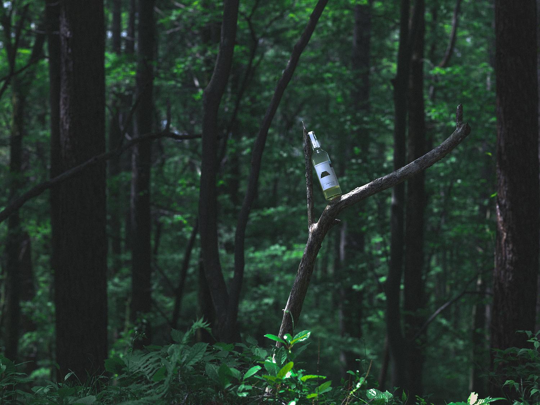 「飲む森林浴」の精神安定効果 木に含まれる「フィトンチッド」という香り成分は、シトラスやベリーの様に華やかで爽快、そして甘い香りがします。研究では、精神安定効果が期待できるとも言われています。
